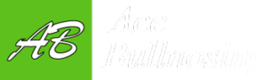 Ace Bullnosing Logo